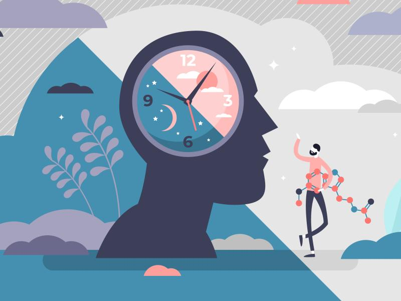 Tracking How the Environment Influences Circadian Rhythms