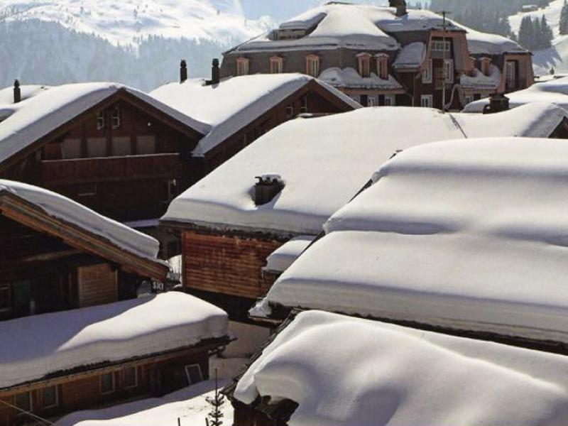 Roof collapse due to snow loads there s an expert for for Snow loads on roofs
